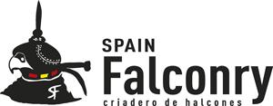 Spain Falconry